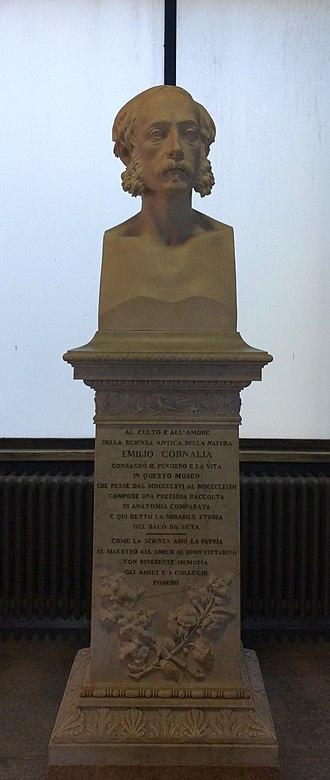 Emilio Cornalia - Bust at the Milan museum