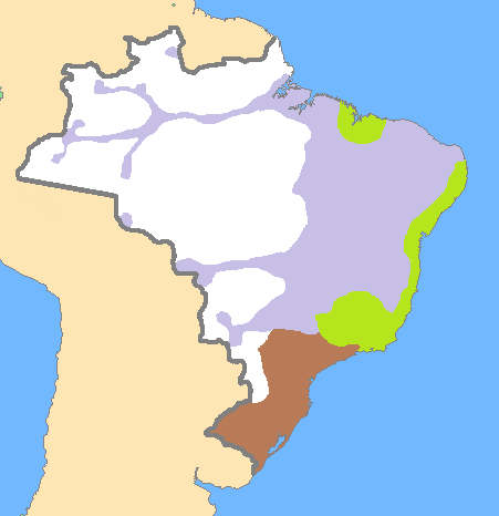 Empire of Brazil ethnic groups (edit)