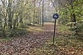 Englischer Garten Herbst-30.jpg