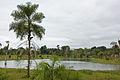 Esmeralda Parque Ecologico 1.jpg