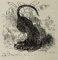 Fábulas de Samaniego (1882) (page 30 crop).jpg