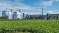 Fabrik Frauenfeld der Schweizer Zucker AG.jpg