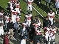 Falcons go in for halftime at Atlanta at Oakland 11-2-08.JPG