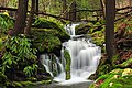 Fall Creek (Revisited) (1) (11659934673).jpg