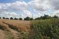 Farmland near Little Ponton - geograph.org.uk - 211648.jpg