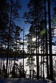 Finland 2017-02-25 (33169667736).jpg