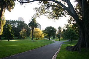 Parks and gardens of Melbourne - Late afternoon sunlight on the Fitzroy Gardens