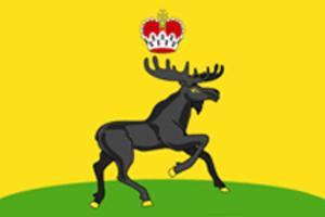 Cherdyn, Perm Krai - Image: Flag of Cherdyn (Perm krai)