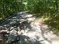 Flat Rock Road's Quinebaug Trail section is closed to vehicles.jpg
