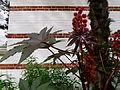 Fleurs inconnues - Jardin Agronomique Tropical 2.JPG