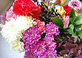 Flickr - ronsaunders47 - RON'S BLOOMS. 3.jpg