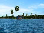 Floating houses on Lake Tempe.jpg