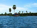 Плавучие дома на озере Tempe.jpg