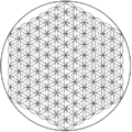 Flower of life-6level.png