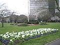 Flowerbed in Victoria Park - geograph.org.uk - 698519.jpg