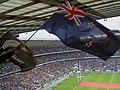 Flying the winning flag - geograph.org.uk - 1591410.jpg