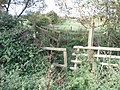 Footbridge over stream - geograph.org.uk - 1636269.jpg