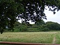 Footpath from B656 to Easthall - geograph.org.uk - 540977.jpg