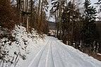 Forest road in the winter near Javůrek, Czechia.jpg