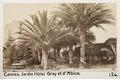 Fotografi från Jardin de l'Hôtel Gray et d'Albion, Cannes - Hallwylska museet - 107218.tif