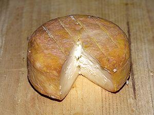 Fromage U Muntagnolu (Corsica)