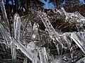 Frozen in Varsey.jpg