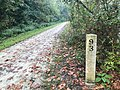 GAP New Mile Marker 93 (48926600091).jpg