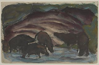 Wild Boars in the Water