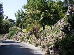 Gardens in Vatican City - Cactaceae - 2.jpg
