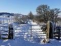 Gate on Physic Lane, Thropton - geograph.org.uk - 1150863.jpg
