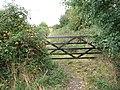 Gate on footpath - geograph.org.uk - 1528186.jpg