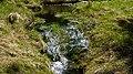 Gelobtbachtal, údolí Klopotského potoka - panoramio (33).jpg