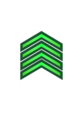 General Directorate of Public Security- Sergeant.png