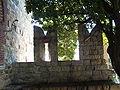 Genova-Castello d'Albertis-DSCF5586.JPG