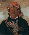 George Catlin - Bód-a-sin, Chief of the Tribe - 1985.66.274 - Smithsonian American Art Museum.jpg