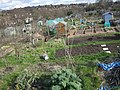 Gledhow Valley Allotments 18 March 2019 9.jpg
