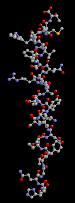 Glukagon