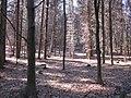 Gmina Narol, Poland - panoramio (19).jpg