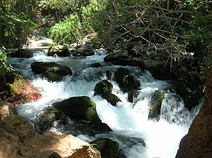 Golan Heights - Banias waterfalls 001.jpg