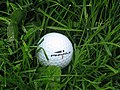 Golf Ball in Rough.jpg