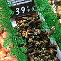 Goose barnacles in Lisbon - 2015.jpg