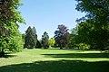 Grands arbres au jardin botanique Meise.jpg