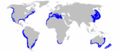 Great White Shark Distibution map.png