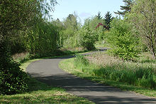 An asphalt path winds through a flat area of grass, trees, and low bushes.