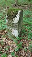 Grenzsteine im Wald zwischen Tauberbischofsheim und Großrinderfeld - 10.jpg