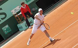 Hajek 2011 French Open.jpg