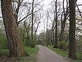Hannover - Clara-Zetkin-Weg - panoramio.jpg