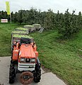 Harvest season for apples and pears at Houten at 7 October 2015 - panoramio.jpg