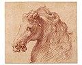 Head of a Horse MET DR1008.jpg
