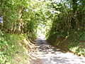 Heightington Road from the ford. - geograph.org.uk - 210147.jpg